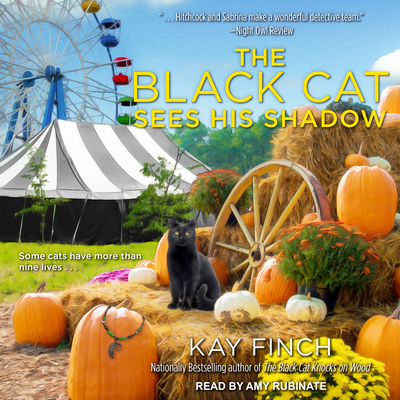 The Black Cat Sees His Shadow (Bad Luck Cat Mystery #3) Cover Image