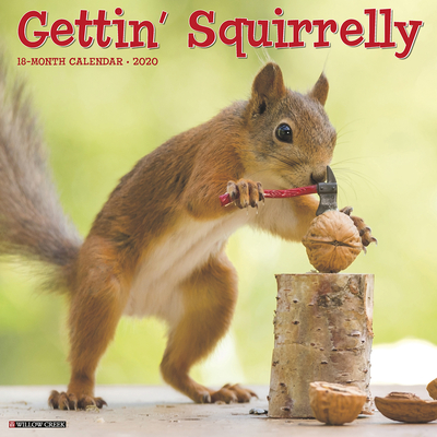 Gettin' Squirrelly 2020 Wall Calendar Cover Image
