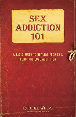 Sex Addiction 101: A Basic Guide to Healing from Sex, Porn, and Love Addiction Cover Image