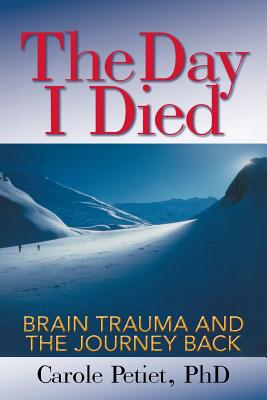 The Day I Died: Brain Trauma and the Journey Back Cover Image