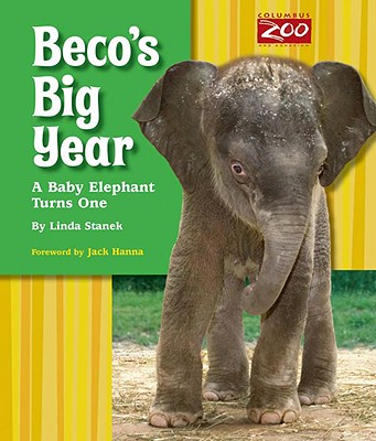 Beco's Big Year: A Baby Elephant Turns One Cover Image