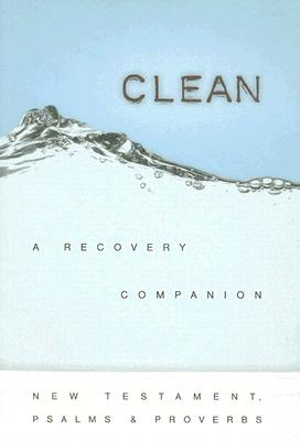 Clean-NCV: A Recovery Companion Cover Image