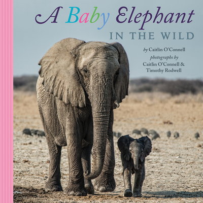 A Baby Elephant in the Wild Cover