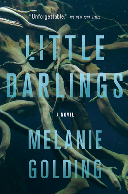 Little Darlings: A Novel Cover Image