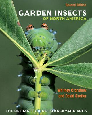 Garden Insects of North America: The Ultimate Guide to Backyard Bugs Cover Image
