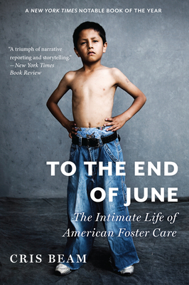 To the End of June: The Intimate Life of American Foster Care Cover Image