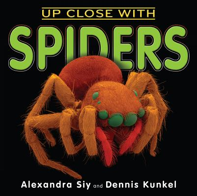 Cover for Up Close With Spiders