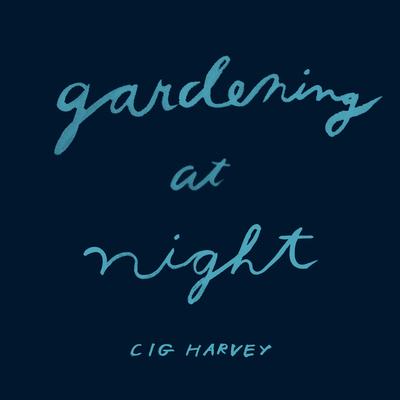 Gardening at Night Cover Image