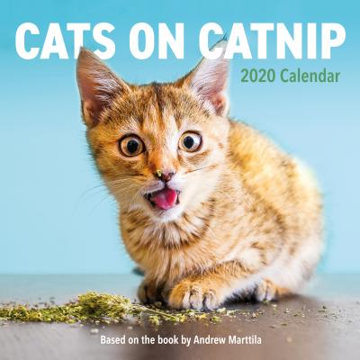 Cats on Catnip Wall Calendar 2020 Cover Image