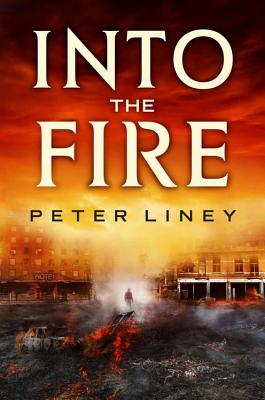 Cover for Into The Fire (The Detainee Series #2)