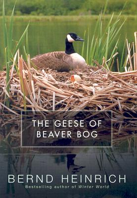 Cover for The Geese of Beaver Bog