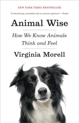 Animal Wise: How We Know Animals Think and Feel Cover Image