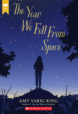 The Year We Fell From Space (Scholastic Gold) Cover Image