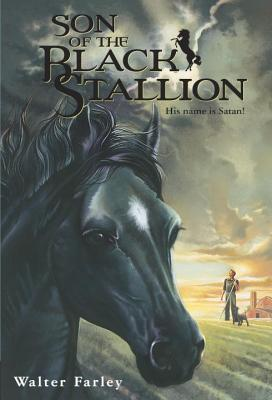 Son of the Black Stallion Cover