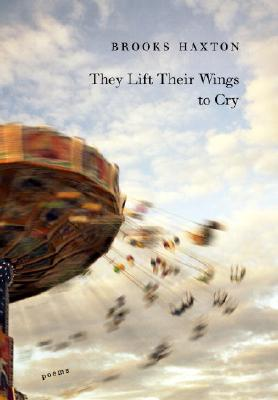 They Lift Their Wings to Cry Cover