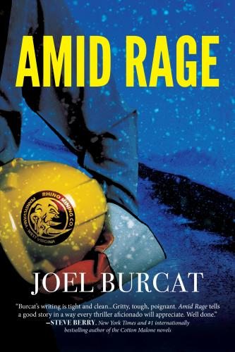 Cover for Amid Rage