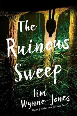 The Ruinous Sweep by Tim Wynne-Jones