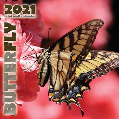 Butterfly 2021 Mini Wall Calendar Cover Image