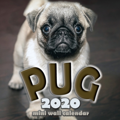 The Pug 2020 Mini Wall Calendar Cover Image