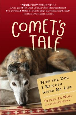 Comet's Tale Cover