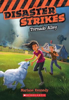 Cover for Disaster Strikes #2