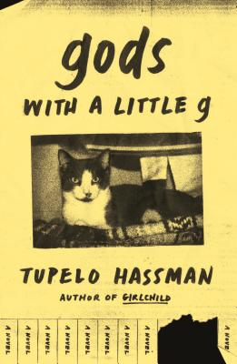 gods with a little g: A Novel Cover Image