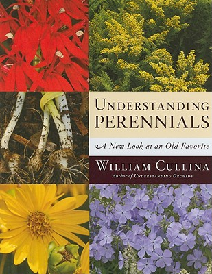 Understanding Perennials Cover