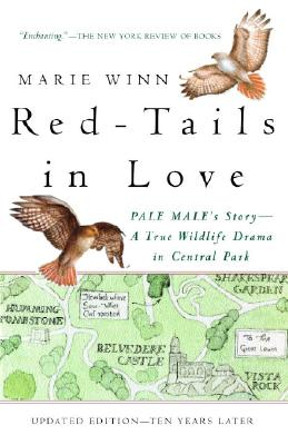 Red-Tails in Love Cover