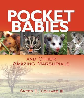 Pocket Babies Cover
