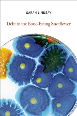 Debt to the Bone-Eating Snotflower Cover Image