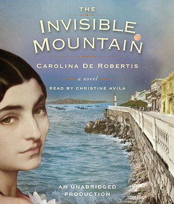 The Invisible Mountain Cover Image