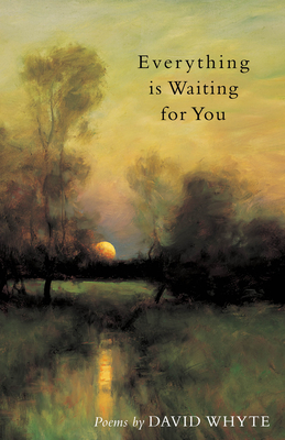Everything Is Waiting for You Cover Image