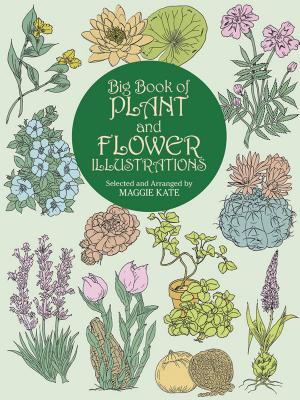 Big Book of Plant and Flower Illustrations (Dover Pictorial Archive) Cover Image