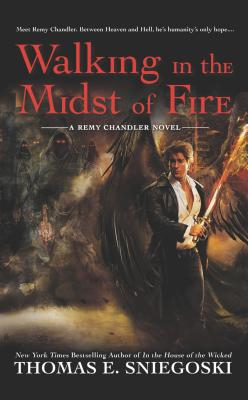 Walking in the Midst of Fire (Remy Chandler Novel #6) Cover Image