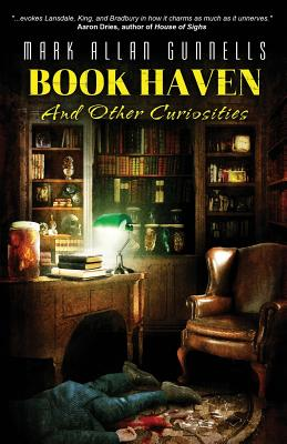 Book Haven: And Other Curiosities Cover Image