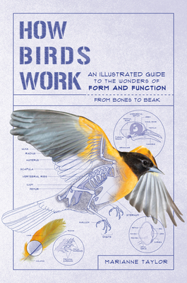 How Birds Work: An Illustrated Guide to the Wonders of Form and Function—from Bones to Beak Cover Image