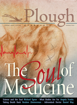 Plough Quarterly No. 17- The Soul of Medicine Cover Image