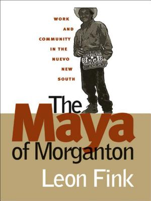The Maya of Morganton: Work and Community in the Nuevo New South Cover Image