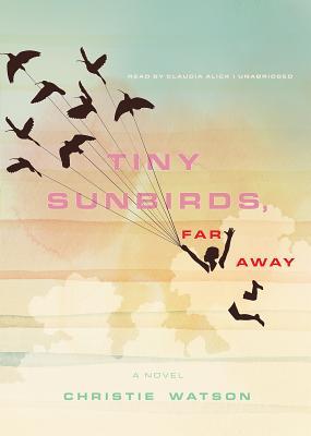 Tiny Sunbirds, Far Away Cover