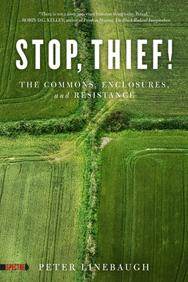 Stop, Thief!: The Commons, Enclosures, and Resistance (Spectre) Cover Image