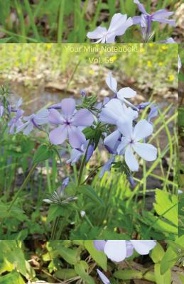 Your Mini Notebook! Vol. 59: Wild phlox greetings from the forest floor Cover Image