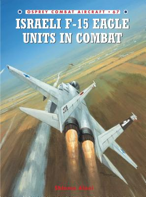 Israeli F-15 Eagle Units in Combat Cover