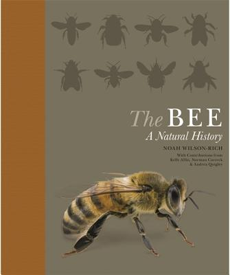 The Bee: A Natural History Cover Image