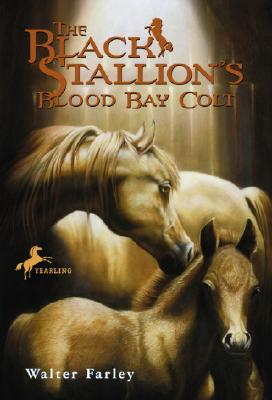 The Black Stallion's Blood Bay Colt Cover