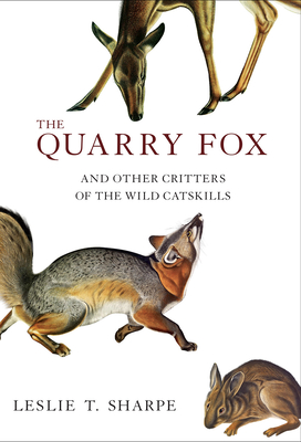 The Quarry Fox: And Other Critters of the Wild Catskills Cover Image