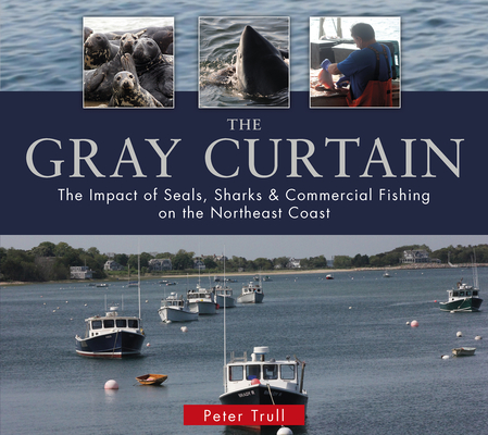 The Gray Curtain: The Impact of Seals, Sharks, and Commercial Fishing on the Northeast Coast Cover Image