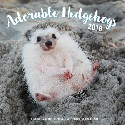 Adorable Hedgehogs Mini 2018: 16 Month Calendar Includes September 2017 Through December 2018 Cover Image