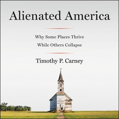Alienated America Lib/E: Why Some Places Thrive While Others Collapse Cover Image