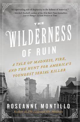 The Wilderness of Ruin cover image