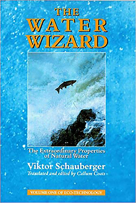 The Water Wizard: The Extraordinary Properties of Natural Water (Eco-Technology #1) Cover Image